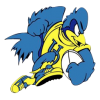 University of Delaware Rugby