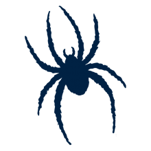 Richmond Spiders